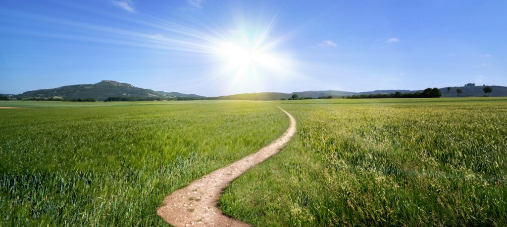 Pathway to better results